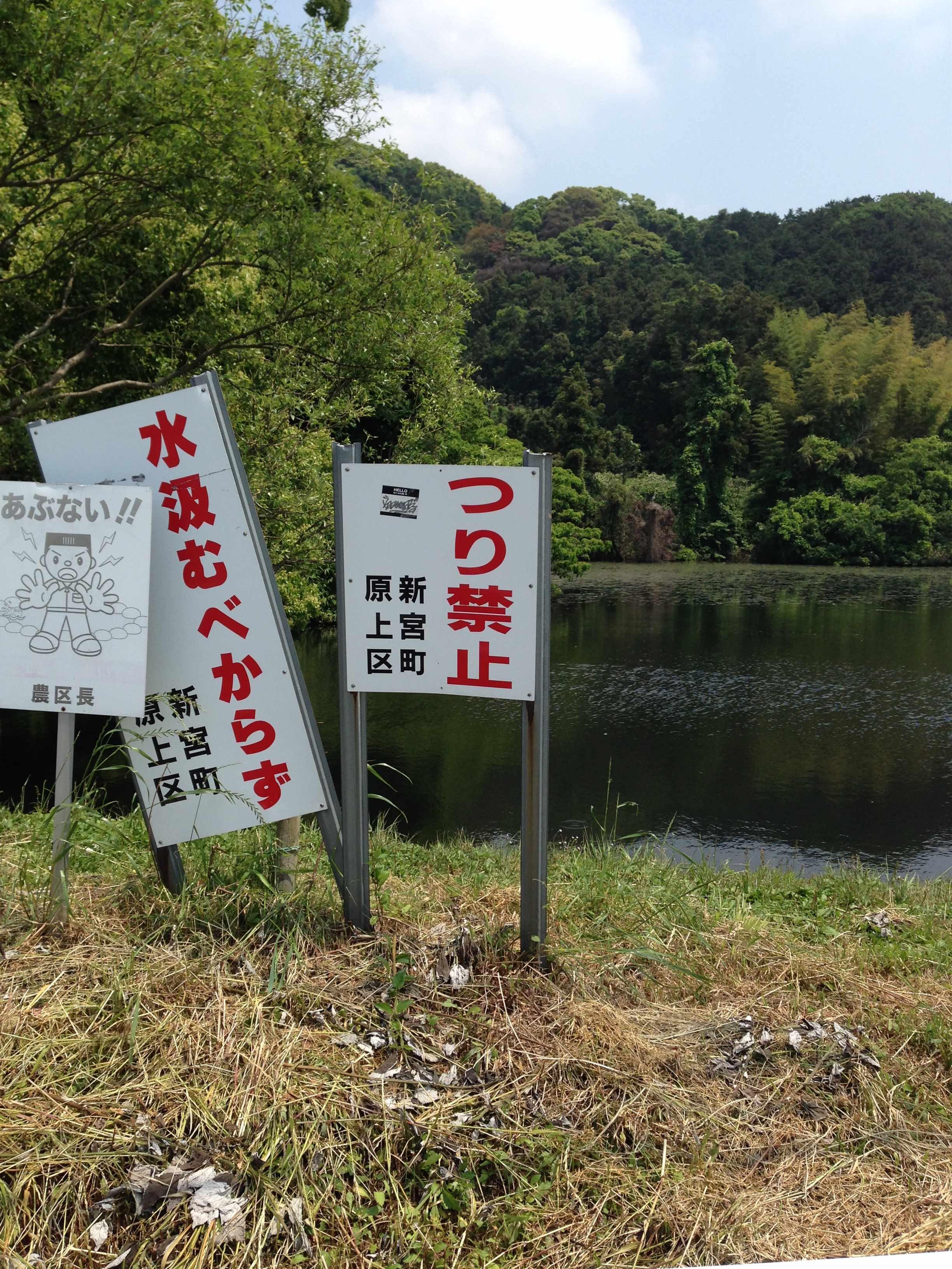 2014-05-15 13.32.41_R.jpg