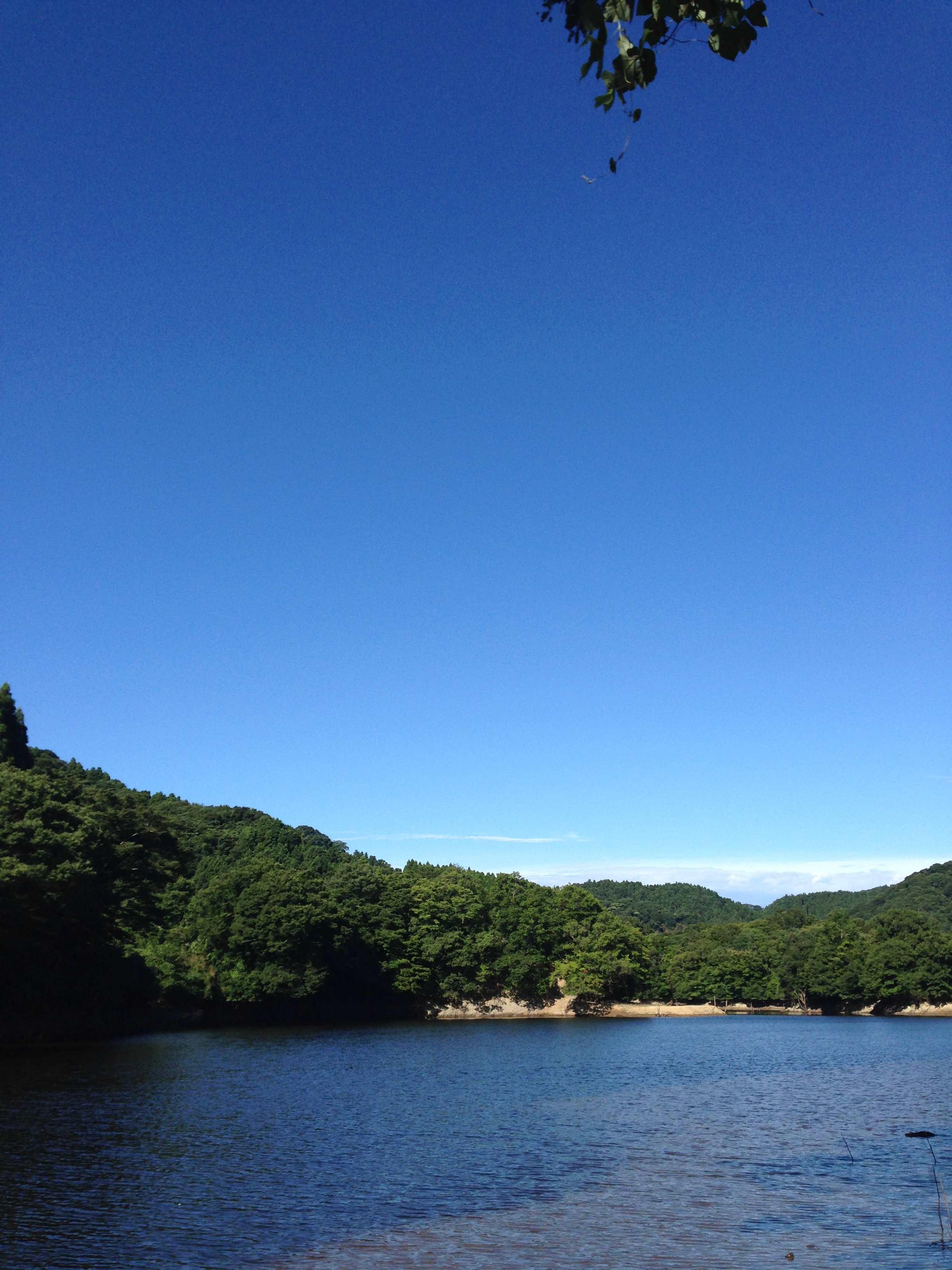 2014-08-03 07.39.36_R.jpg
