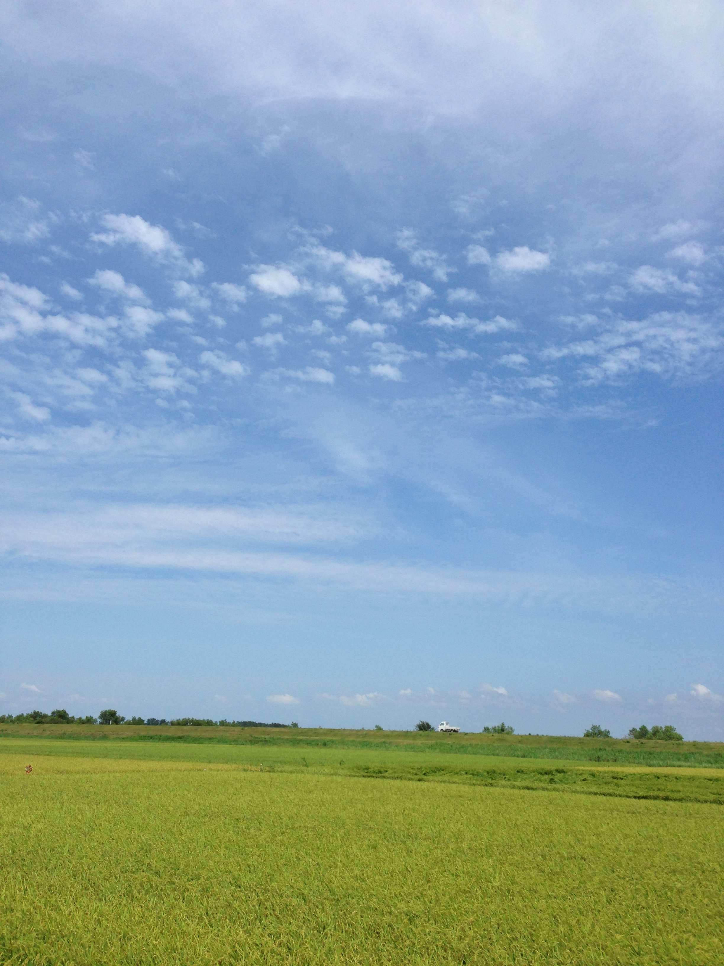 2014-08-13 11.20.30_R.jpg