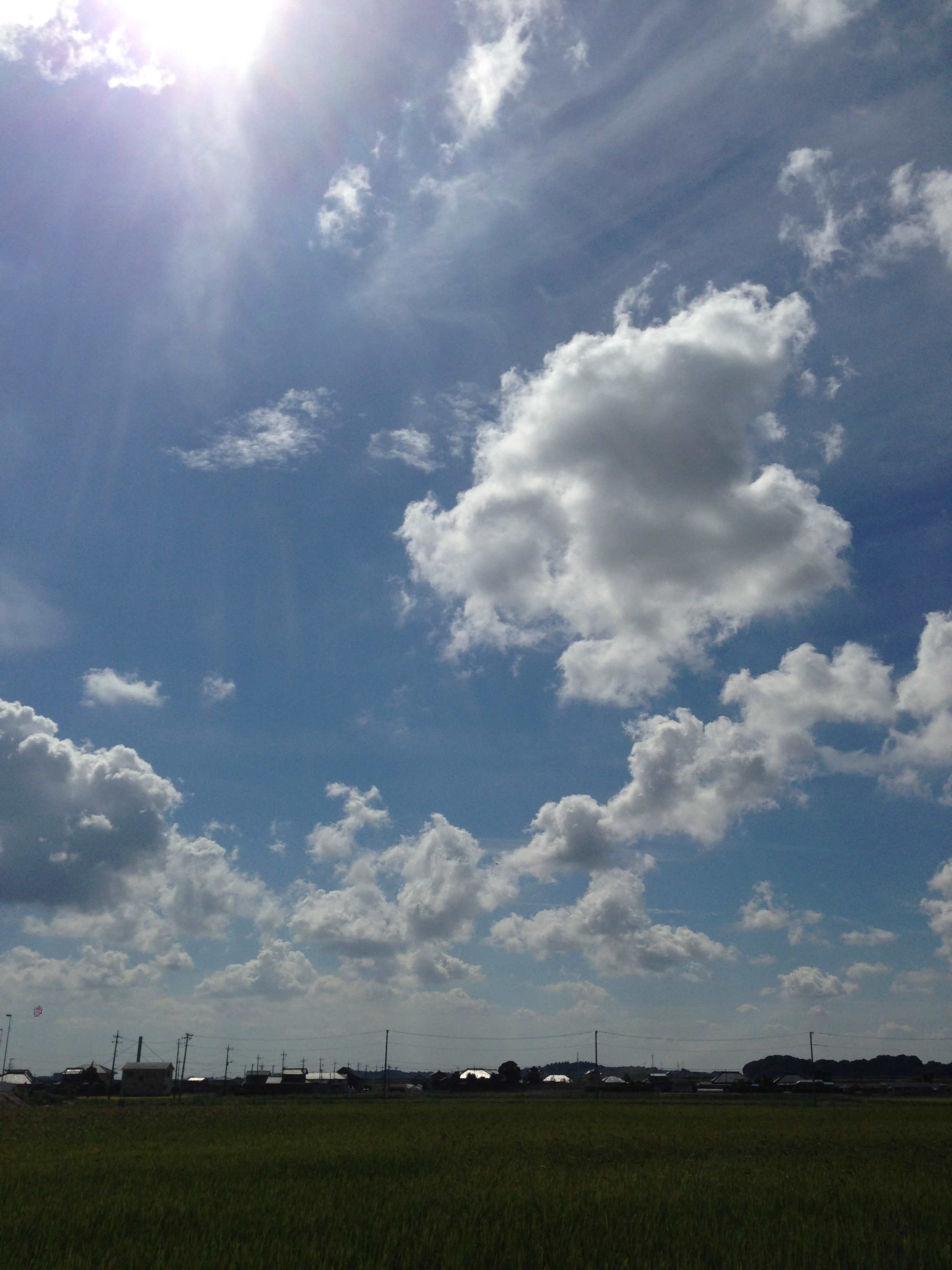 2014-09-21 10.12.48_R.jpg